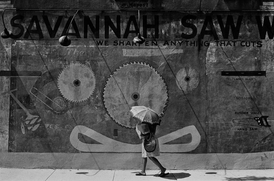 jack-leigh-SavannahSaw